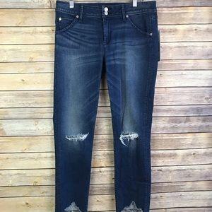 Hudson 30 Collin Skinny Crop Jeans